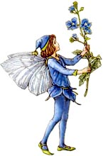Fairy Picture for a Famous Fairy Tale